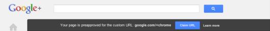 Google URL personalizado