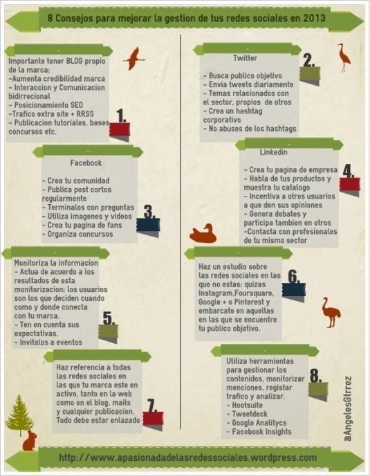 Infografía consejos gestion redes 2013